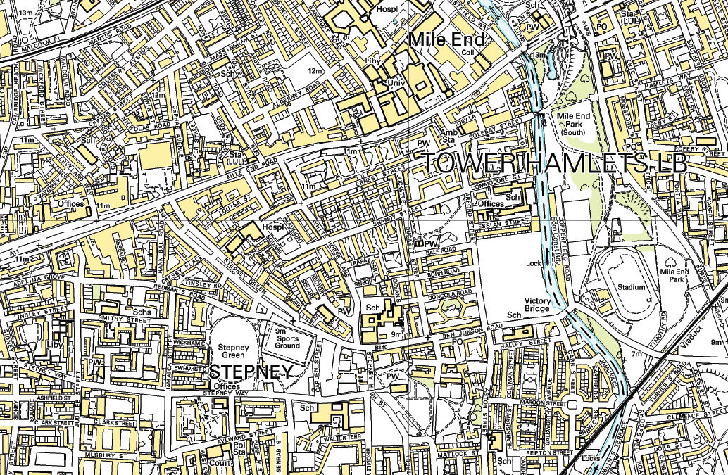Austerity Tower Hamlets 101: Should we or should we not raise Council Tax in Tower Hamlets?